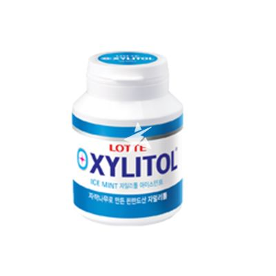 Lotte Xylitol Chewing Gum Bottle - Ice Mint 90g