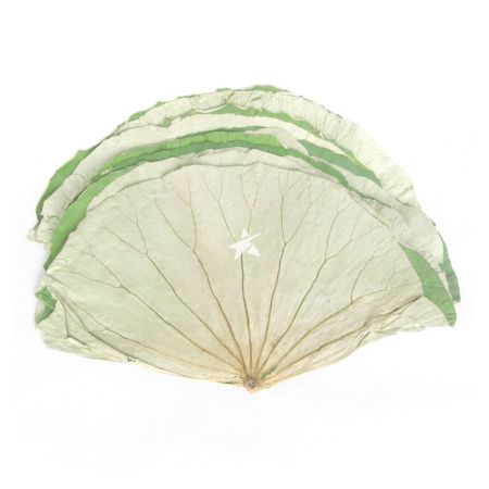 Zheng Feng Dried Lotus Leave Approx. 10 Pieces 400g